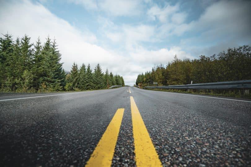 vägen genom skogen på bilresa i genom norge